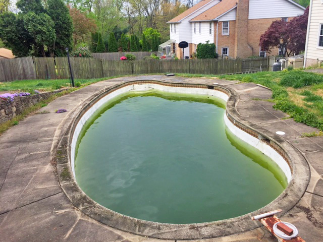 Before the pool removal